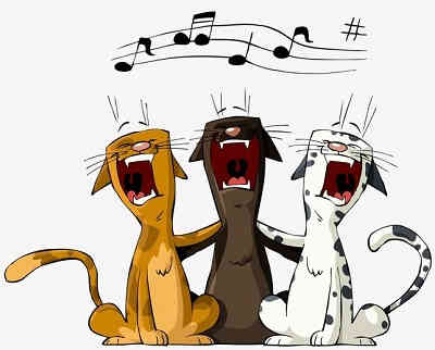 Honky Cat Karaoke pussy cats singing