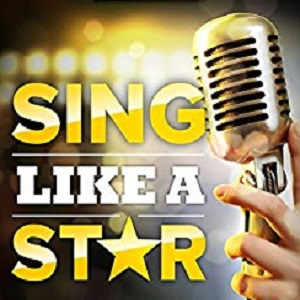 HomeStar Karaoke - sing like a star