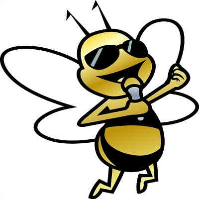Sunfly Karaoke - singing bee with microphone - song list and catalogue